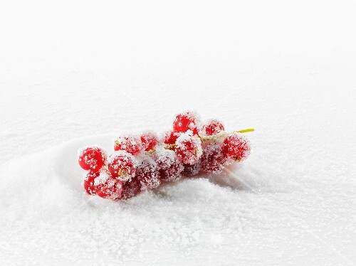 Redcurrants in a pile of sugar