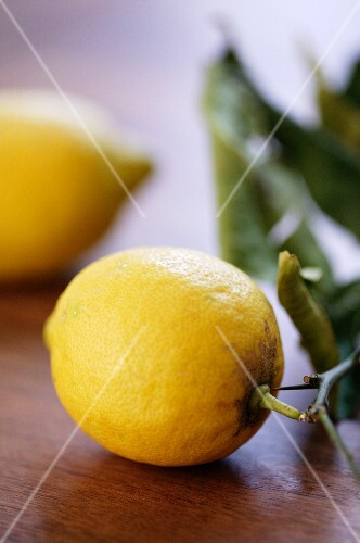 Two lemons with stalks and leaves
