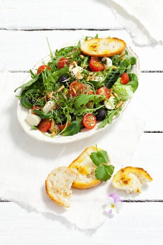 Mixed leaf salad with rocket, spinach, cherry tomatoes, mozzarella, olives, pine nuts and cress