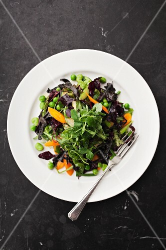 Mixed leaf salad with watercress, carrots and peas (seen from above)