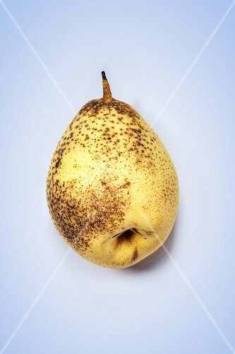 A Nashi pear on a coloured surface