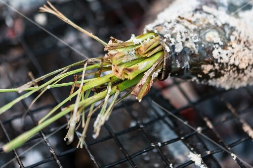 A fish stuffed with lemongrass on a barbecue (Vientiane, Laos)