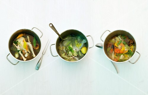 Chicken stock, fish stock and vegetable stock in saucepans