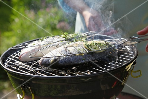 Fish being grilled