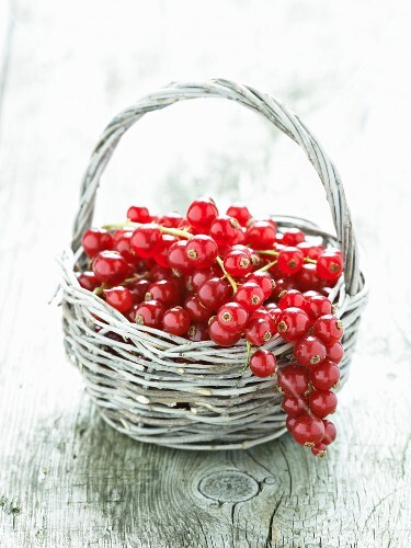 Redcurrants in a basket