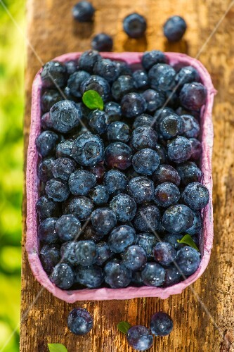 Fresh blueberries in a paper punnet on a wooden board