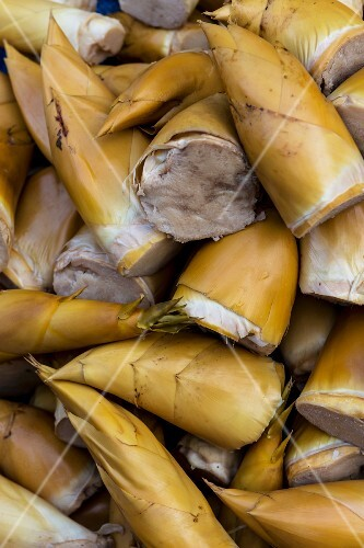 Steamed bamboo (Thailand)