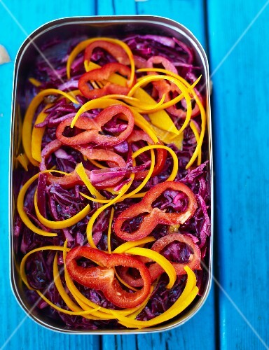 Red cabbage salad with pepper and pumpkin for and autumnal picnic