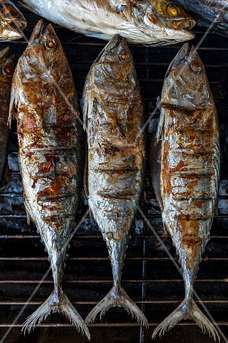 Grilled fish on a barbecue (Thailand)