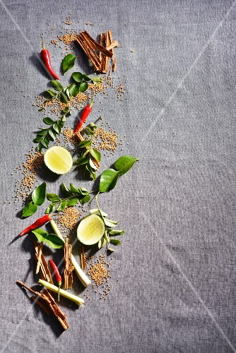 An arrangement of Oriental herbs and spices
