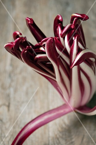 Radicchio di Treviso on a wooden table