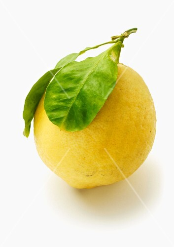 Citron with leaf