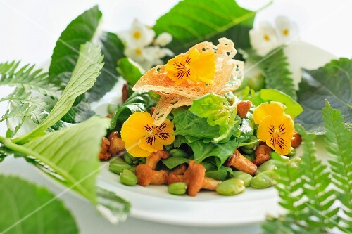 Mixed leaf salad with chanterelle mushrooms, broad beans and pansies