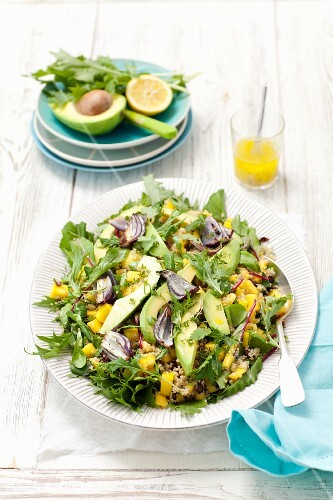 Quinoa and mango salad with avocado, red onions, mizuna and a mixed salad