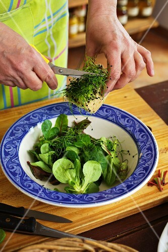 A salad with fresh herbs being made