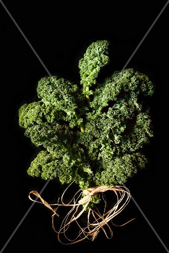 Fresh Bunch of Kale