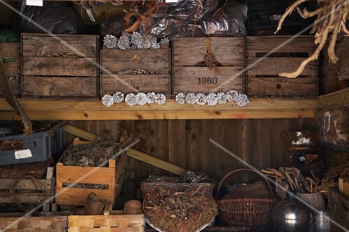 Baskets and old wooden boxes filled with pine cones on a shelf in a storage shed