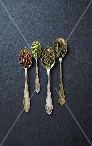 Various types of green tea on spoons