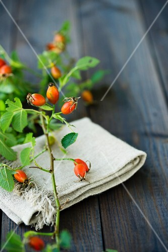 A sprig of rosehips on a linen cloth and a wooden table