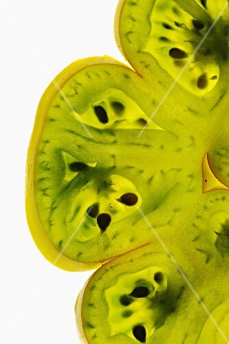 Slices of green tomato lit from behind