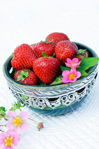 Strawberries and strawberry flowers in a silver bowl