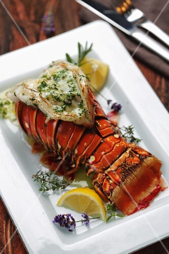 Crayfish with herb sauce (Australia)