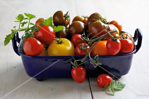 Tomatoes in a roasting dish