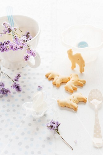 Baby animal crackers