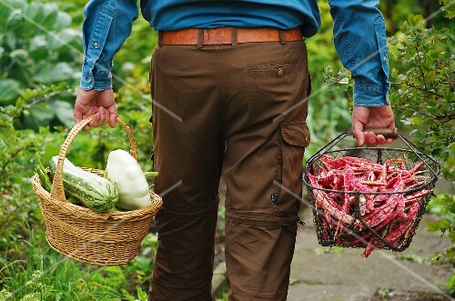 A man carrying two baskets of freshly harvested vegetables in from the garden