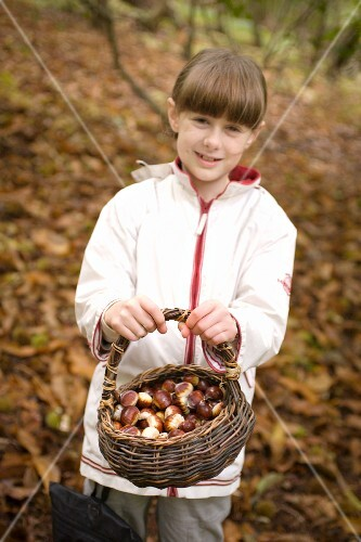 A girl holding a basket of chestnuts in a forest