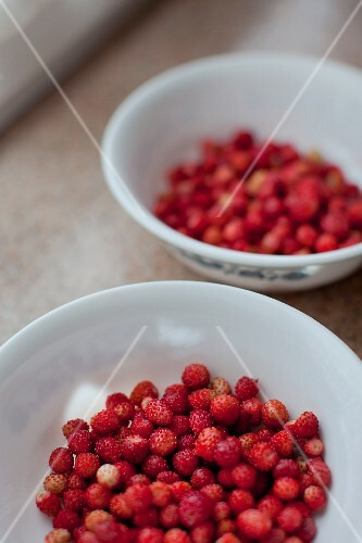 Two bowls of fresh wild strawberries