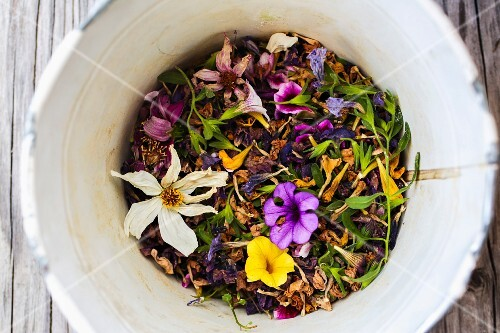 A bucket of dried flowers in a garden (seen from above)