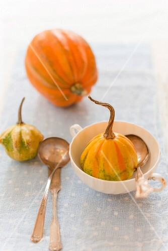 Baby acorn pumpkins with a soup cup and cutlery