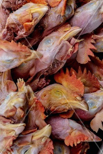 A tired of chicken heads at a market (Yangon, Myanmar)