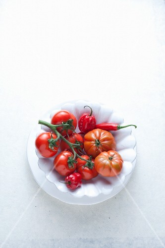 Fresh chillis and tomatoes on a plate