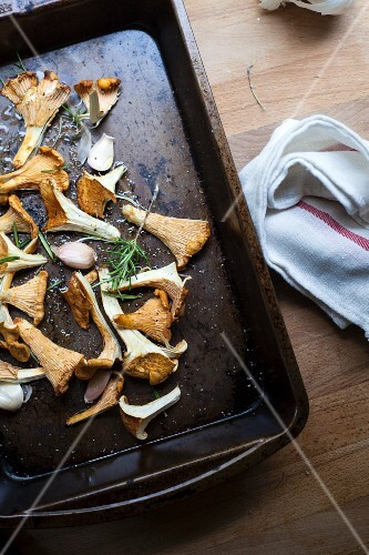 Chanterelle mushrooms with garlic and rosemary on a baking tray