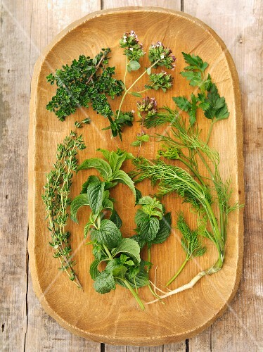 Fresh herbs on a wooden platter: thyme, lemon thyme, oregano, parsley, mint, dill