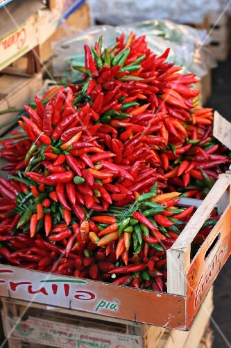 Bunches of chilli peppers at a market