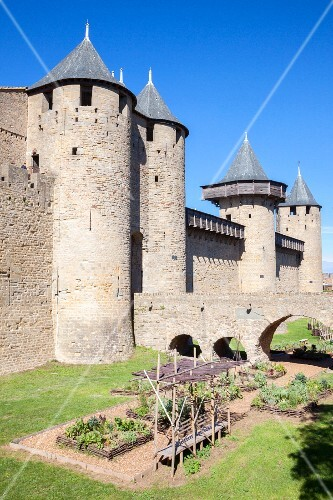 A herb garden at the citadel of Carcassonne (France)