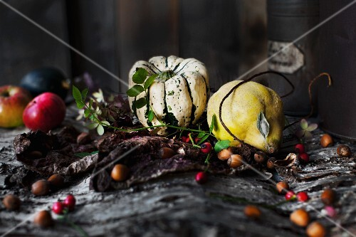 An autumnal arrangements featuring squash, quince, apples, hazelnuts and rosehips on a piece of bark