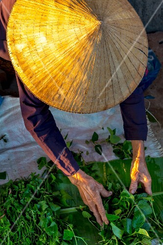 A vegetable seller at a market (Vientiane, Laos)