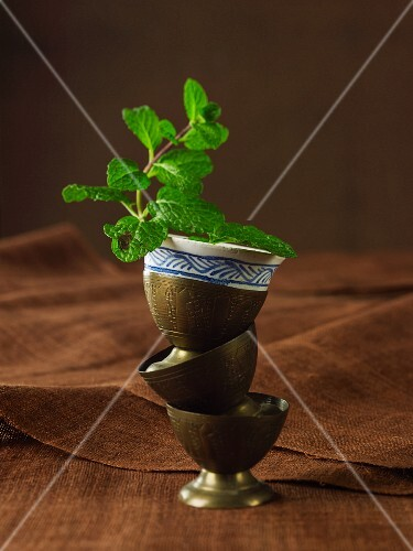 A pot of peppermint in a stack of brass cups