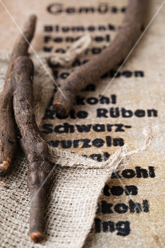 Black salsify on a piece of jute