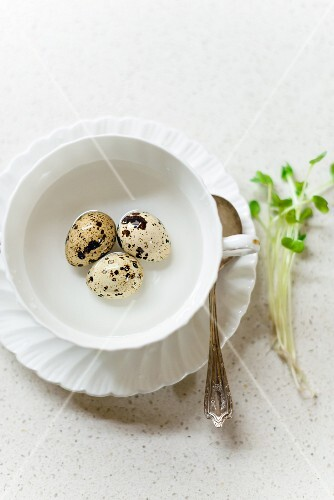 Quail eggs in a cup of water