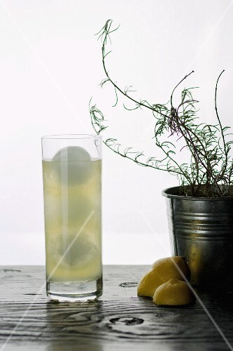 A lemon cocktail with rosemary