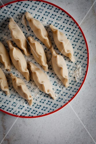 Vegetable-filled, raw gyoza on a red-and-blue patterned plate