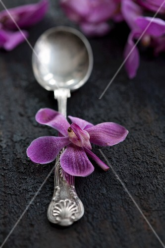A silver spoon with purple orchid flowers