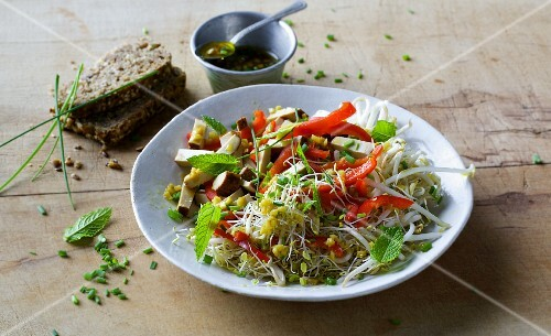 Bean sprout salad with peppers and smoked tofu