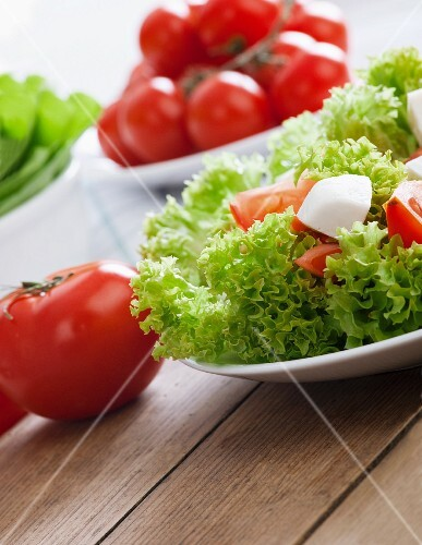 Lollo biondo lettuce with tomatoes and mozzarella