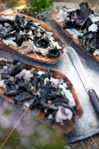 Toast topped with mozzarella and wild mushrooms